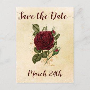 Vintage Champagne Burgundy Red Rose Save the Date Announcement Postcard